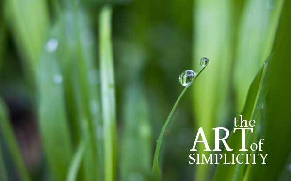Forbes & The Art Of Simplicity